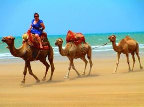 Logan De La Barre Hays Moroccan Summer